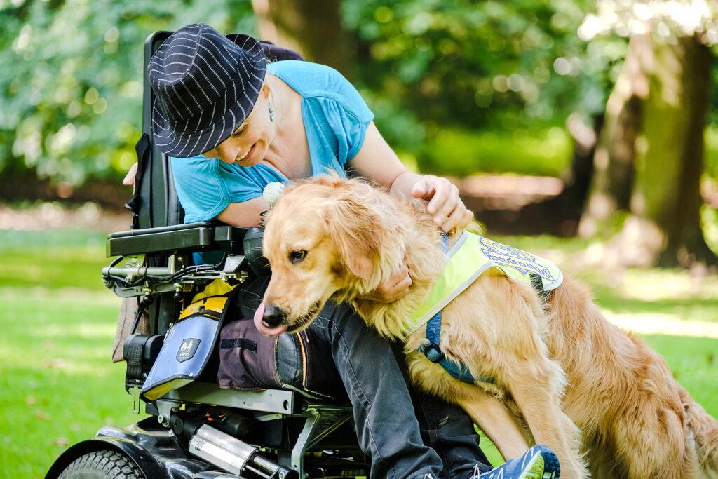 Ein Assistenzhund hilft einem Rollstuhlfahrer